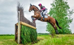 Horse jumping cross country fence