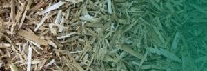 Nedz Bed Pro straw fade to green
