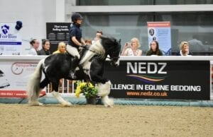Nedz Bed rider in arena